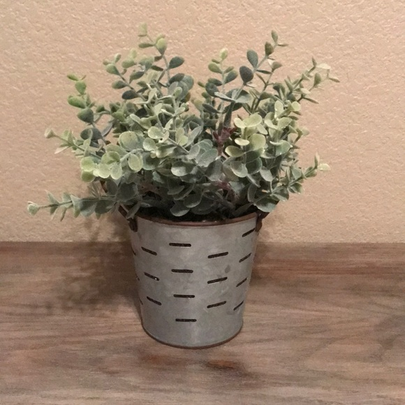 Faux Succulent Decor!